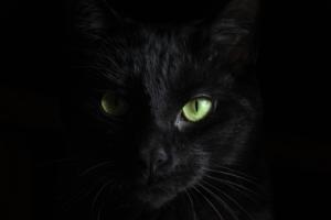 Symbolique du noir